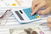 Accountant Checking A Spreadsheet