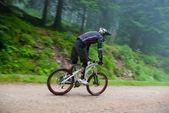 Mountain bike race in a forest