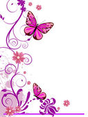Vector illustration of colorful floral elements flowers and butterfly