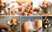 Koláž obrazů hnědá vejce