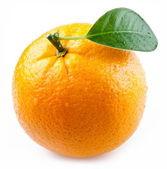 Obrázek zralé pomeranče na bílém pozadí