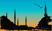 Vector illustration of Istanbul