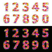 Numbers vector colorful flower font on black and white