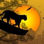 Постер, плакат: Panther on a tree