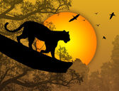 Silhouette view of panther on a tree at beautiful sunset vector illustration