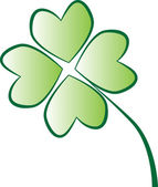 Isolated green four leaf clover