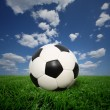 thumbnail of Soccer ball on grass