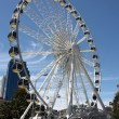 thumbnail of Perth wheel