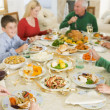 thumbnail of Family All Together At Christmas Dinner