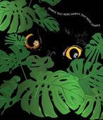 Black wild cat lurking behind tropical foliage flower monstera watching potential prey