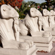 thumbnail of Egyptian statues outside the Luxor Hotel  in Las Vegas