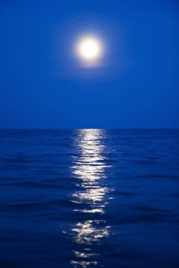 Moonlight and the sea