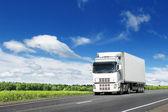 fehér teherautó ország autópályán kék ég alatt