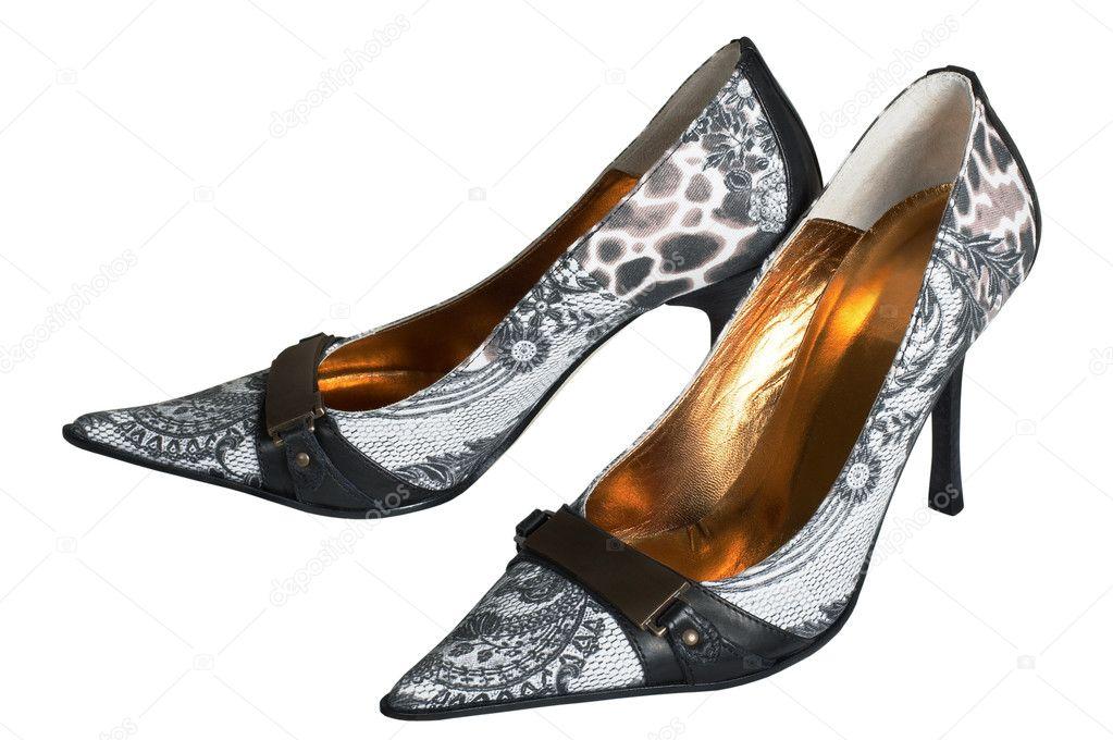 eac8d8461f Moderne Frauen Schuhe — Stockfoto © igterex #4473935