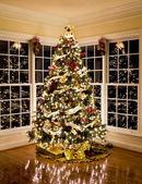 Fotografie schöne Weihnachtsbaum in der Nacht