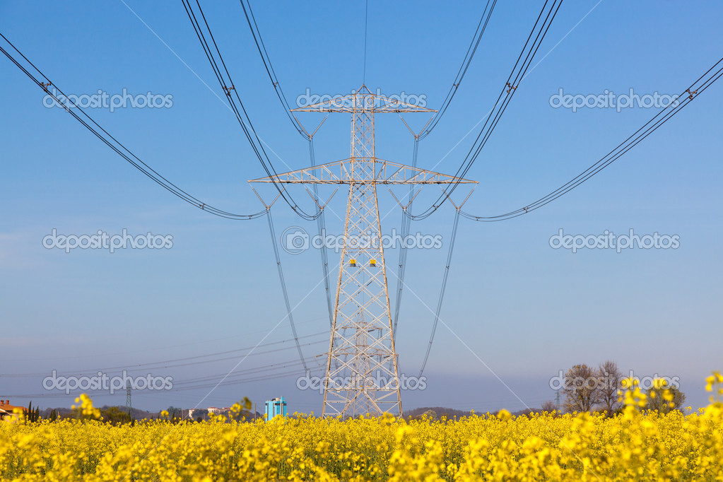 Electricity Pilon in the Countryside on Spring