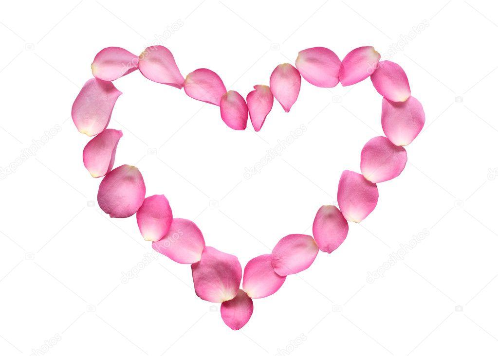 Blütenblätter Herz darstellen — Stockfoto © kvkirillov #4663872