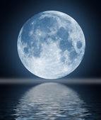 full moon obrázek s vodou