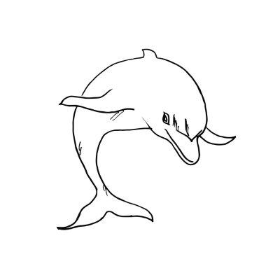 The drawn dolphin.Vector illustration