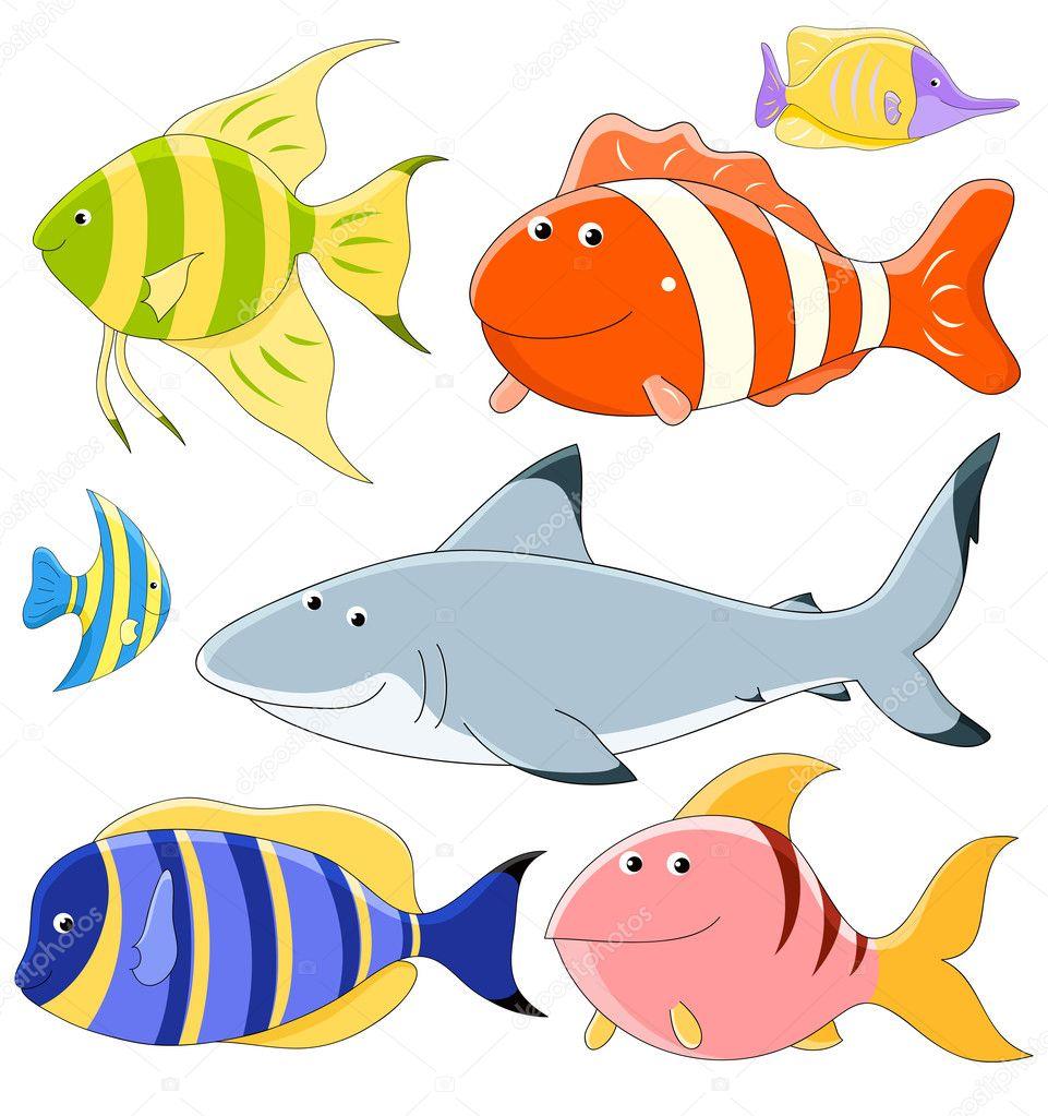 fish-collection vector illustration ? Dmitriy Shironosov ...