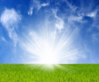 Sunlight on a green field and the sky stock vector