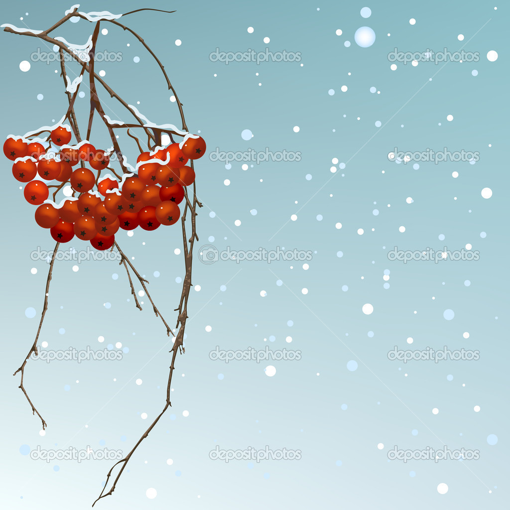 The winter background thread rowan.