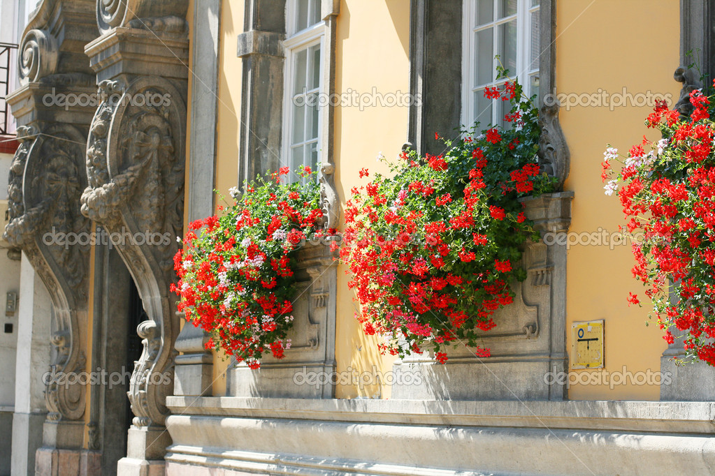 Windows with flowers in Budapest