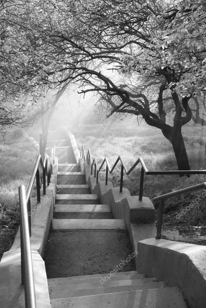 Sunshine in beautiful park.