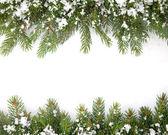 Fotografie weihnachten rahmen mit schnee isoliert auf weißem hintergrund