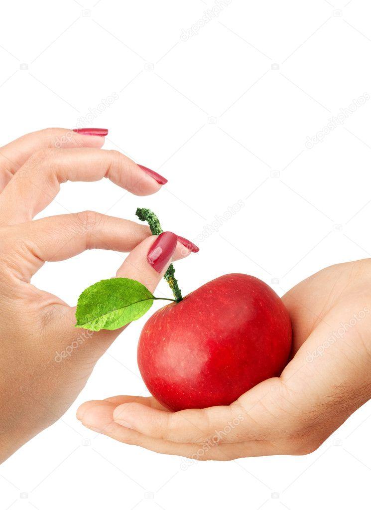 Girl gives the man an apple