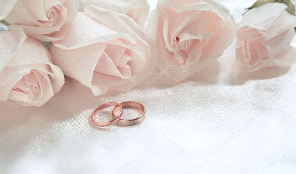 Wedding rings and roses as background — Stock Photo ...