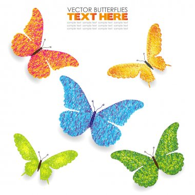Green yellow blue orange butterflies isolated on white hand draw