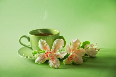 The cup of green tea