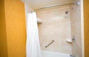 Bath tub and shower in the bathroom