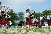Marschera skotska bandet marchin på gräs