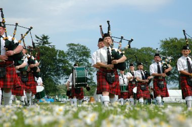 Marching scottish band marchin on grass
