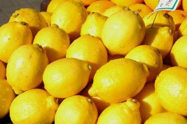 Lemons on display