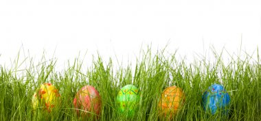 Easter eggs in fresh green grass
