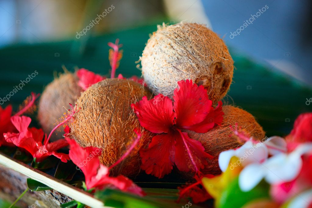 Coconuts and hibiscus flowers