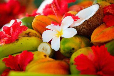 Coconuts, fruits and tropical flowers