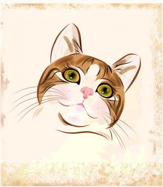 Vintage portrait of ginger tabby cat
