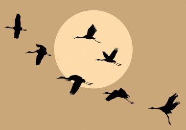 """Картина, постер, плакат, фотообои """"векторные силуэты летающие краны на фоне солнца """", артикул 3939571"""