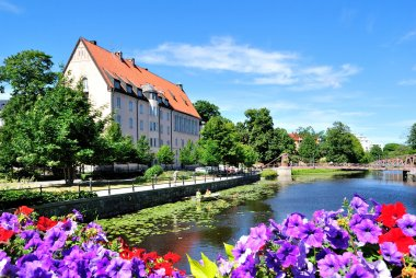 Flowering Uppsala. Sweden