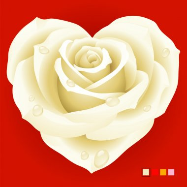 Vector white rose in the shape of heart clip art vector
