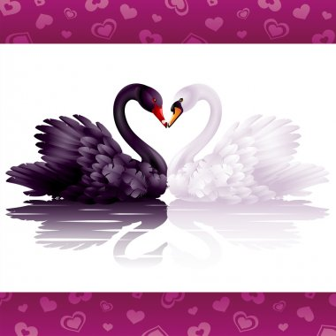 Two graceful swans in love: black-and-white heart