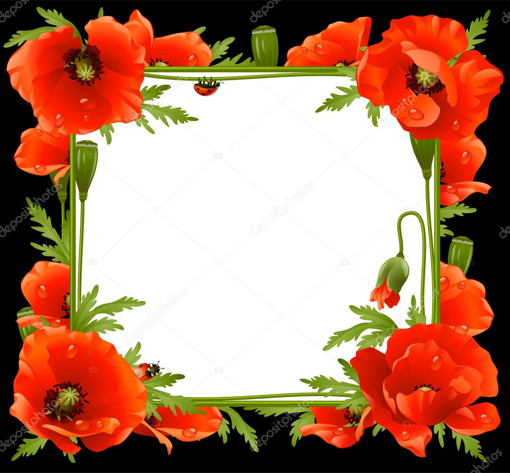 marco flores de amapola — Archivo Imágenes Vectoriales © d-e-n-i-s ...