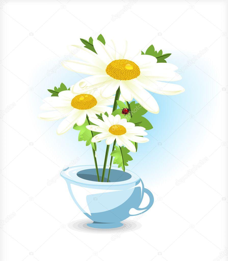 Daisies in pot