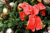Fotografie Vánoční strom