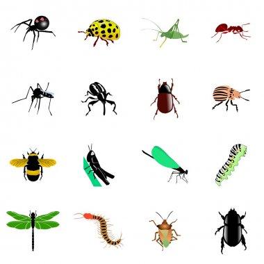 "Картина, постер, плакат, фотообои ""насекомые "", артикул 5001620"