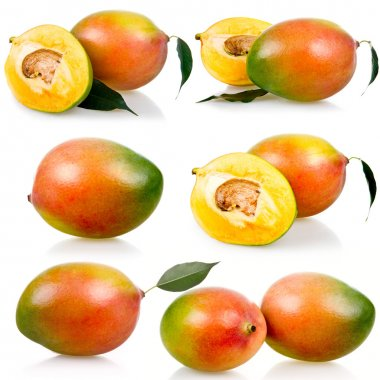 Collection of ripe mango fruits with leaves